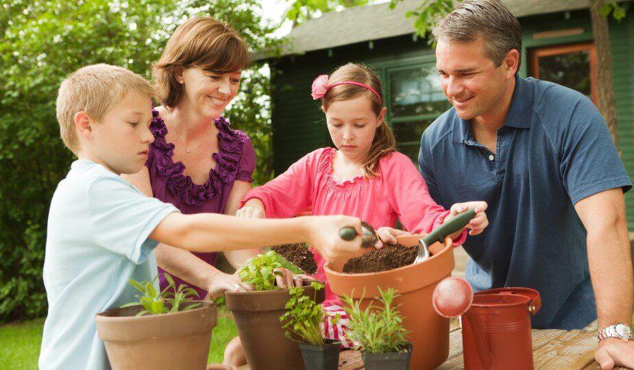5 Beneficios del cuidado de Plantas.